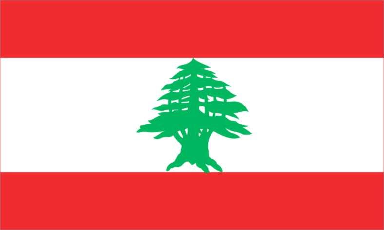 20060821203102-libano.jpg