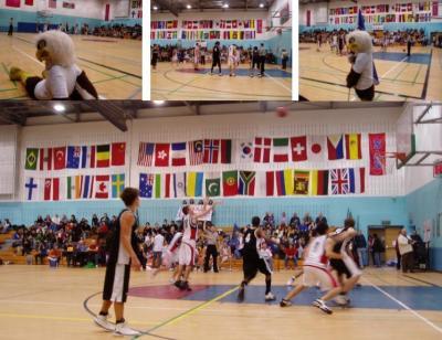 20090126142017-basket.jpg