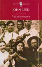 20100102090516-mexico-insurgente-foto.jpg