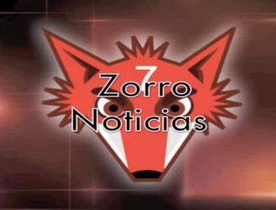 20101117131009-zorro-noticias.jpg