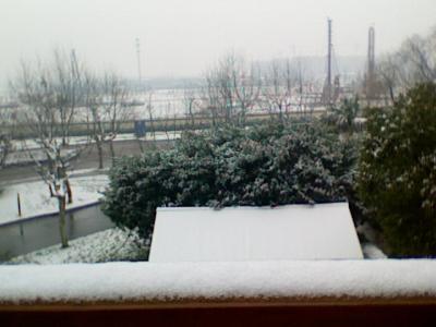 20110119051438-19-enero-2011-1.jpg