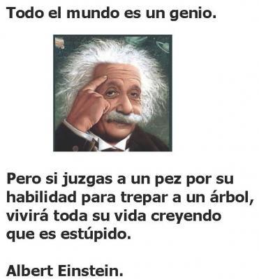 20120827142903-todo-el-mundo-es-un-genio.jpg