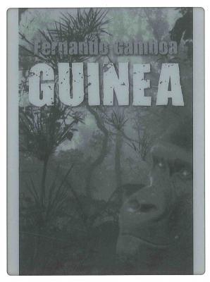 20121110121922-guinea-blog.jpg
